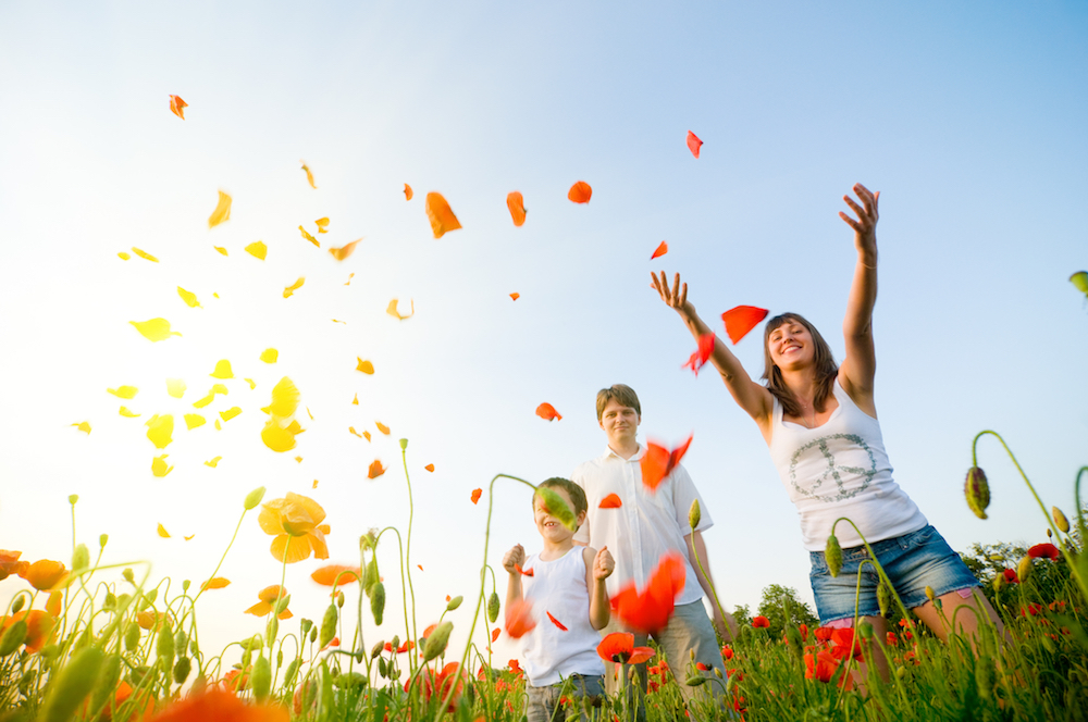 shutterstock_32408362 flowers in the air