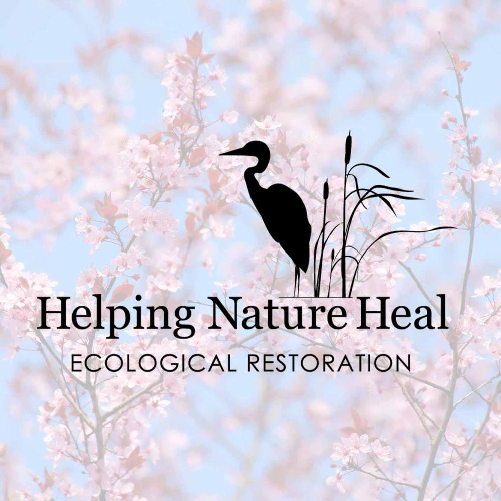 How can we help your Nature heal?