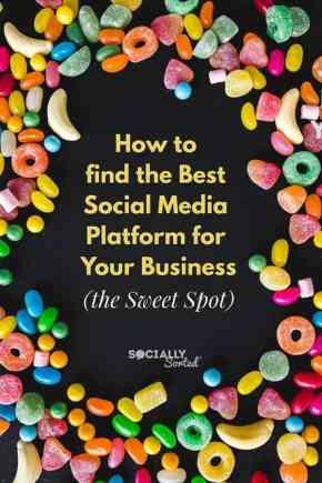 How to find the Best Social Media Platform for Your Business the Sweet Spot Find The Best Social Media Platform