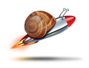 speed up your website Fast Snail