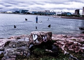 Helsinki Secrets revealed: Sharkattack at Eiranranta