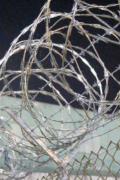 Barbed Wire Fence by Annagenia Jacob