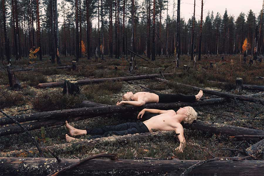 Scorched earth policy from the series Natural outlaw by Svante Gullichsen