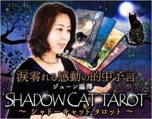 幸せになりたい【選ぶべきは彼との愛or別の道?】黒猫はどう答える?