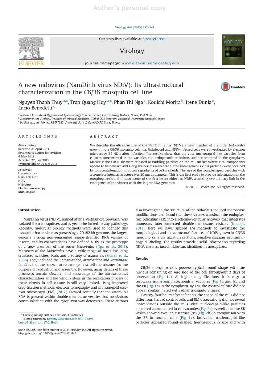 Dr. Nguyen Thanh Thuy's article