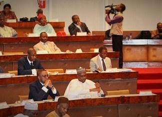 Assemblée nationale du Cameroun ce lundi 1er juillet 2019 © Hémicycles d'Afrique