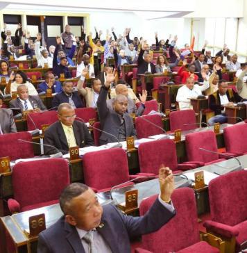 Les députés présents ont voté quasi à l'unanimité la modification de la loi 2011-013 portant statut de l'opposition, mercredi 21 août 2019. © RFI/Sarah Tétaud