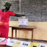 Elections législatives de 2011 au Cameroun © Rfi / HA