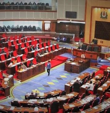 Vue de l'Assemblée nationale de la Tanzanie © Youtube / HA