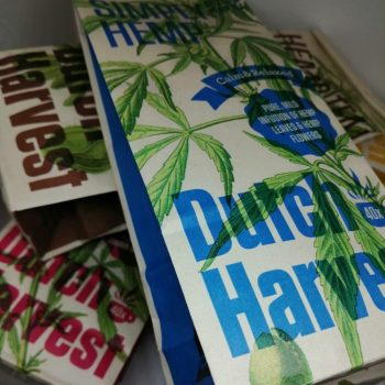 Dutch Harvest Hemp Tea (all varieties)