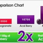 Hempindica's CBD Infused Maqui Berry Powder Superfood