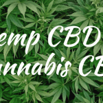 The differences between hemp oil and cbd oil