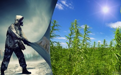 Industrial Hemp: Superhero/Savior of Humanity