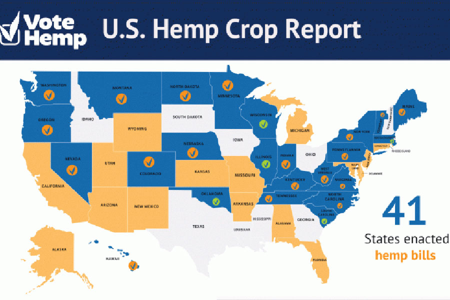 U.S. Jumps to No. 3 Among Top Hemp Growing Nations