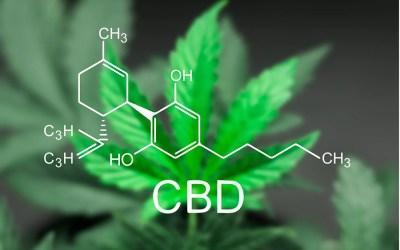 FDA Exec: Don't Expect an Exception for CBD