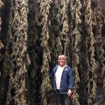 Learn to Make HEMP Oil with Fresh Hemp Flower and Thrive…from AZURE FARMS