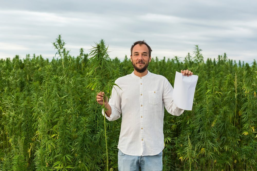 Hemp Paper May Cost More But its Environmental Benefits Are Worth it