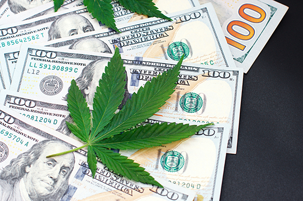 Mission 2020: Growing the Industrial Cannabis Industry