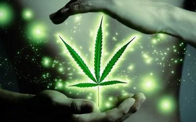 Cannabis…Relax & Restore Wellness… 20 Health Benefits