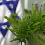 U.S. FUNDING MEDICAL CANNABIS RESEARCH IN ISRAEL FOR LAST 50 YEARS