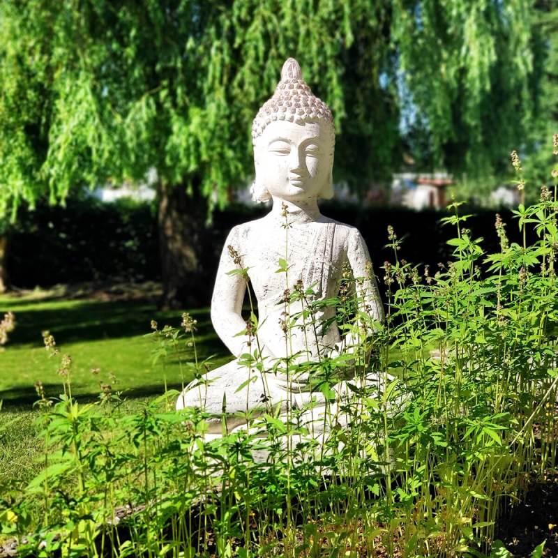 Buddha Diät