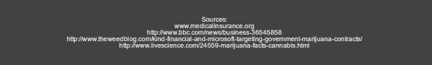 microsoft-marijuana-6