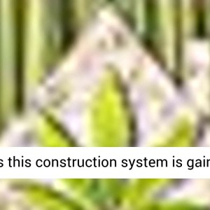 Building with Hemp - BOOK REVIEW