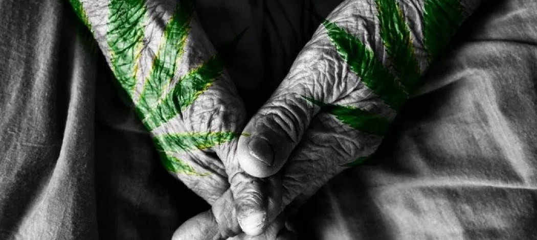Is Cannabis an Effective Treatment for Rheumatoid Arthritis?