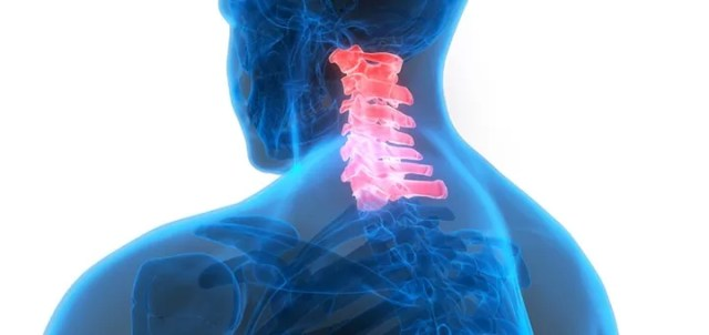 CBD can help human spinal cord injury patients.