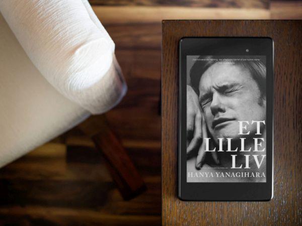 """Anmeldelse: """"Et lille liv"""" af Hanya Yanagihara - Bogfinken bogblog"""