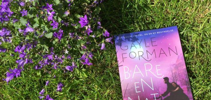 """""""Bare en nat"""" af Gayle Forman - Bogfinkens bogblog"""