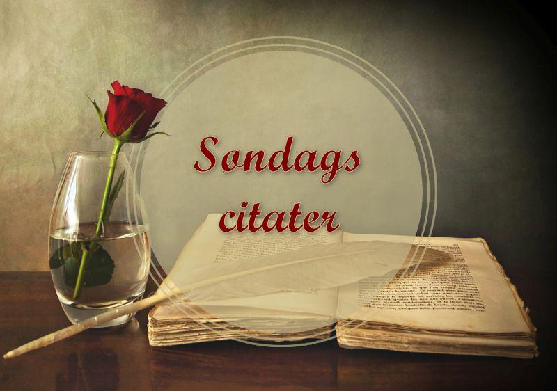 Søndags citater ~ Bogfinkens bogblog