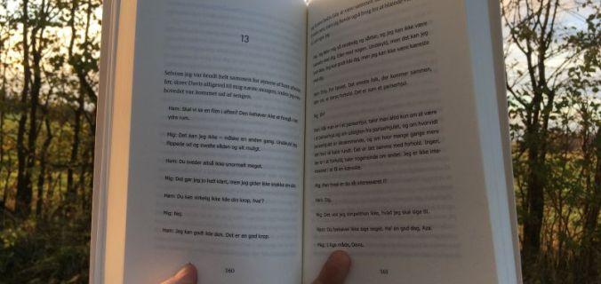 New Years Book Tag - Bogfinkens bogblog