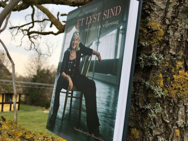 Et lyst sind af Britt Bendixen - Bogfinkens bogblog