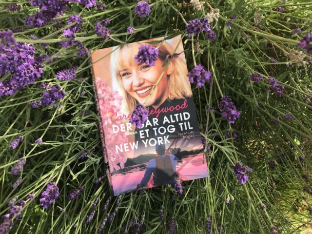Der går altid et tog til New York af Carey Heywood - Bogfinkens bogblog