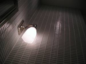 VANITY- FLOOR TO CEILING GLASS TILE