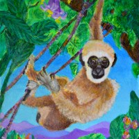 Young Gibbon