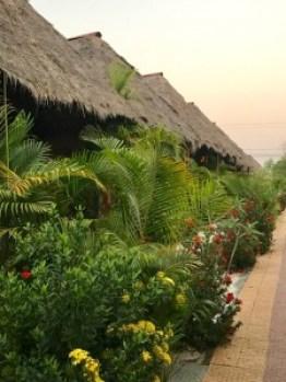 Hienot kasvit peittää bungaloweja joten jokaisella on oma rauha