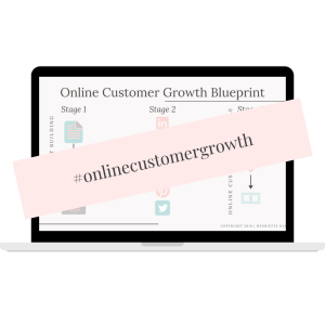 online customer growth blueprint