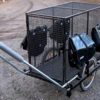 Cykelkärra för hund...