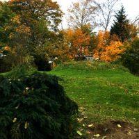 En härlig dag i höstens färger...