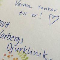 Att man har valt Varbergs Djurklinik...