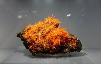 Crocoïte. Mine Adélaïde, Tasmanie, Australie. Acquis grâce aux crédits Sorbonne Université.