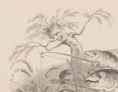 poissons arbres grandville