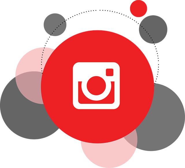 Instagram Business Profile How to Sell on Instagram