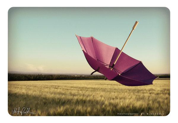 like_the_wind