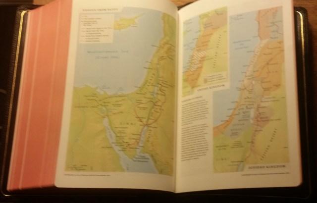 nlt_maps