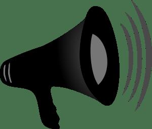 Loud-Speaker-Detail-300px