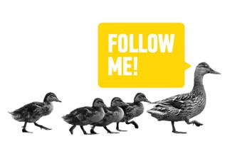 leader duck
