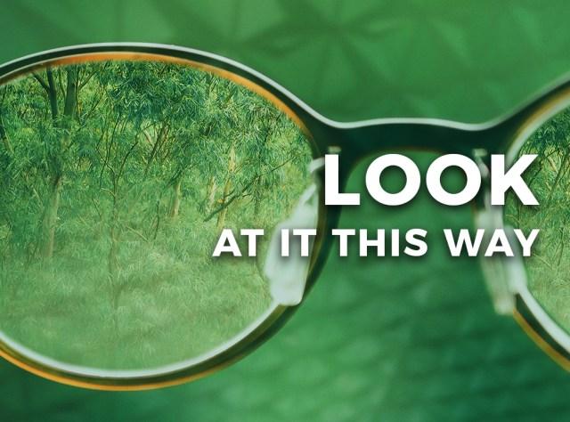 TEBI-Look-at-it-this-way